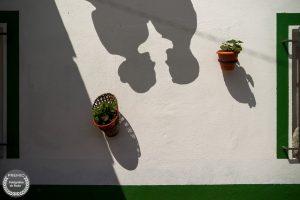 "Foto de:<a href=""https://fotografos-de-boda.net/porfolio/fabian-martin-dominguez/"" target=""blank""> Fabian Dominguez </a>"