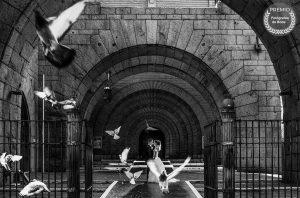 """Foto de:<a href=porfolio/carlos-santanatalia-photography/ target=""""blank""""> Carlos Santanatalia</a>"""